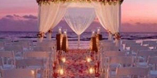 Diventa una wedding planner